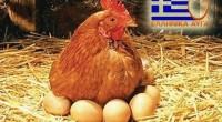 ( 6-άδα / 12-άδα / κιβώτιο) Φρέσκα αυγά , κατηγοριοποίηση εκτροφής «αυγά αχυρώνα» με ημερομηνία παραγωγής-ημερομηνία λήξης-κωδικό αρ. κέντρου αυγοδιαλλογής-συσκευασίας-σε πλαστική διάφανη συσκευασία φιλική προς το περιβάλλον