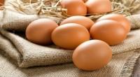 Τα αυγά είναι μια πλούσια πηγή πρωτεϊνών και αρκετών απαραίτητων θρεπτικών συστατικών. Νεότερα δεδομένα υποδεικνύουν ότι η κατανάλωση αυγών συσχετίζεται με βελτιωμένη ποιότητα δίαιτας και καλύτερη αίσθηση πληρότητας μετά τα […]