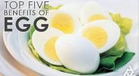 Δείτε στα Αγγλικά (μπορείτε να ενεργοποιήσετε τους υπότιτλους στο Youtube τα 5 καλύτερα πλεονεκτήματα του αυγού !