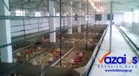 Σήμερα (13/06/2016) τοποθετήσαμε το νέο μας κοπάδι με νεοσσούς ωοτοκίας ελεύθερης βοσκής στην πτηνοτροφική μονάδα μας στην Βένιζα στους πρόποδες του όρους Πατέρα. Σε 5 μήνες με τη βοήθεια του […]