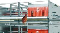 H εταιρία SKA srl λανσάρει στην ευρωπαϊκή αγορά τον ορνιθώνα αυγοπαραγωγής LIBRA.O ορνιθώνας ( aviary) LIBRA αποτελεί ιδανική λύση για τις μεσαίες σε μέγεθος μονάδεςαυγοπαραγωγής. Ενσωματώνει προς όφελος του παραγωγού […]